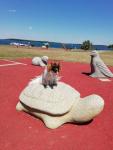 Mélisse va se reposer sur une tortue géante en pierre